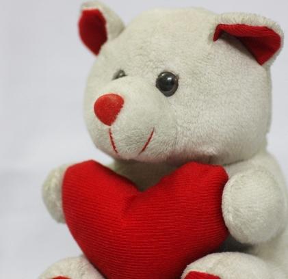 Valentine stuffed (640x427)